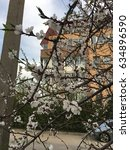 the spring | Shutterstock . vector #634896590