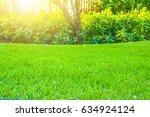 close up green grass field with ... | Shutterstock . vector #634924124