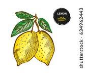 hand drawn decorative lemon... | Shutterstock .eps vector #634962443