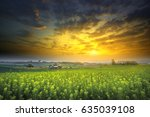 beautiful sunrise and privacy... | Shutterstock . vector #635039108