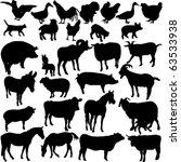 farm animals collection 2  ... | Shutterstock .eps vector #63533938