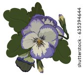 realistic voilet pansy flowers... | Shutterstock .eps vector #635394644