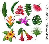 tropical plants hawaii flowers... | Shutterstock .eps vector #635542514