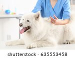 Stock photo veterinarian giving injection to dog in clinic 635553458