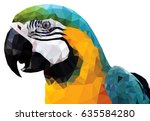 an exotic colorful parrot  low... | Shutterstock .eps vector #635584280