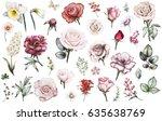 Set Elements Of Rose  Narcissu...