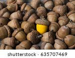 colorful acorn against of... | Shutterstock . vector #635707469