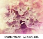 lilac | Shutterstock . vector #635828186