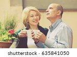 elderly  couple having morning... | Shutterstock . vector #635841050