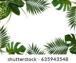 frame of tropical leaves ... | Shutterstock . vector #635943548