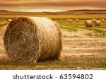 Focus On Hay Bale In The...