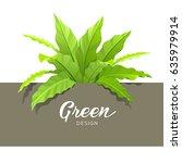 green asplenium nidus design ... | Shutterstock .eps vector #635979914