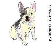Bulldog  Illustration  Vector