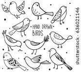 bird collection. collection of... | Shutterstock .eps vector #636021146