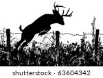 Silhouette Of A Whitetail Buck...