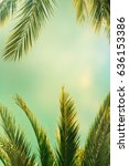 palm trees on the background of ... | Shutterstock . vector #636153386
