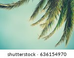 palm trees on the background of ... | Shutterstock . vector #636154970