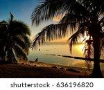 beautiful sunset mood at white... | Shutterstock . vector #636196820