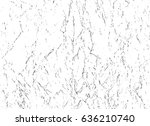 abstract black and white... | Shutterstock . vector #636210740