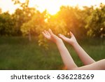human hands open palm up... | Shutterstock . vector #636228269