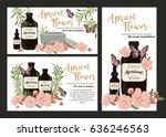 set of apricot spring flowers... | Shutterstock .eps vector #636246563