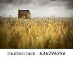beautiful rural scene in south... | Shutterstock . vector #636296396