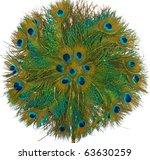 Peacock Feather Fan Pattern...