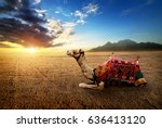 camel in the desert of the... | Shutterstock . vector #636413120