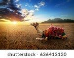 camel in the desert of the... | Shutterstock . vector #636413120