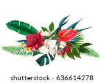 exotic floral composition | Shutterstock . vector #636614278