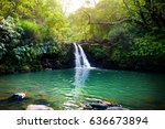 tropical waterfall lower... | Shutterstock . vector #636673894