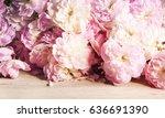 tender roses | Shutterstock . vector #636691390