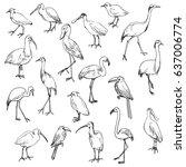 Vector Set Of Birds  Hand Draw...
