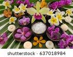 Many Orchid And Frangipani ...