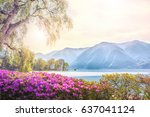 beautiful view of the lake... | Shutterstock . vector #637041124