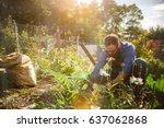 Man Planting Crops In Communal...
