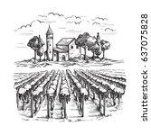 rows of vineyard grape plants... | Shutterstock .eps vector #637075828