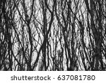 background texture with black... | Shutterstock . vector #637081780