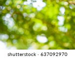 Abstract Nature Background Wit...