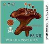 paxil mushroom in engraved... | Shutterstock .eps vector #637171834