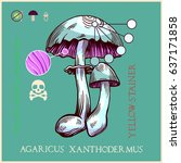 yellow staining  mushroom in... | Shutterstock .eps vector #637171858
