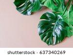 monstera leaves template ... | Shutterstock . vector #637340269