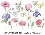 flowers and leaves  watercolor  ...   Shutterstock . vector #637370110