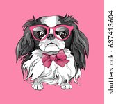 japanese chin dog in a glasses... | Shutterstock .eps vector #637413604