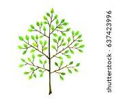 tree. hand drawn watercolor... | Shutterstock . vector #637423996