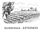 rows of vineyard grape plants... | Shutterstock .eps vector #637435654