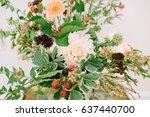 close up of fall flower... | Shutterstock . vector #637440700