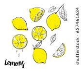 vector hand drawn lemon.... | Shutterstock .eps vector #637461634