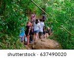 manoa falls  hawaii   february...   Shutterstock . vector #637490020