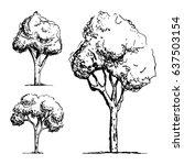 trees sketch vector   Shutterstock .eps vector #637503154
